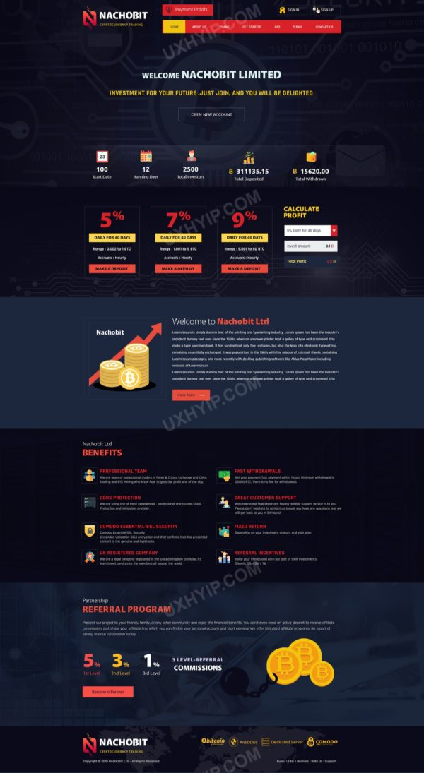 HYIP Template - Investment Business Template NachoBit ID 103