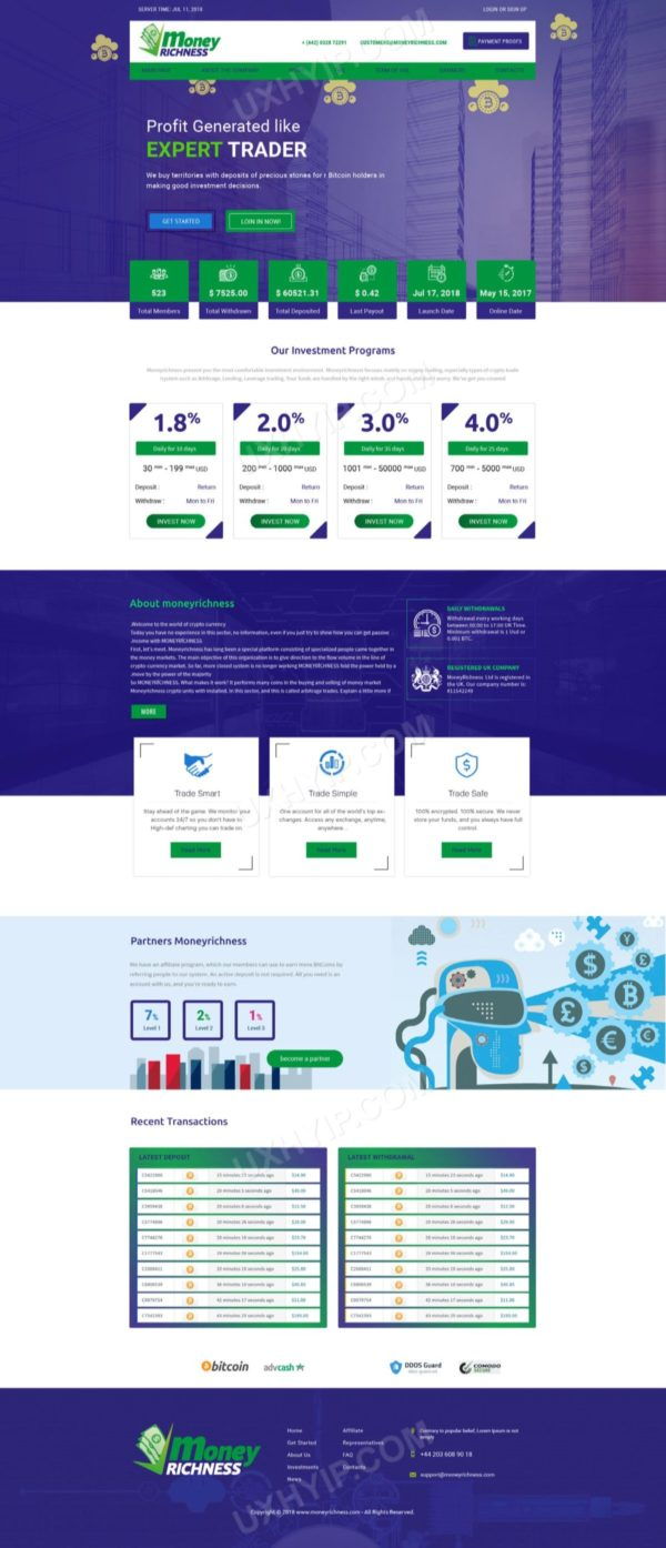 HYIP Template - Investment Business Template MoneyRichness ID 137
