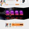UXHYIP Template 99 ArtInvest
